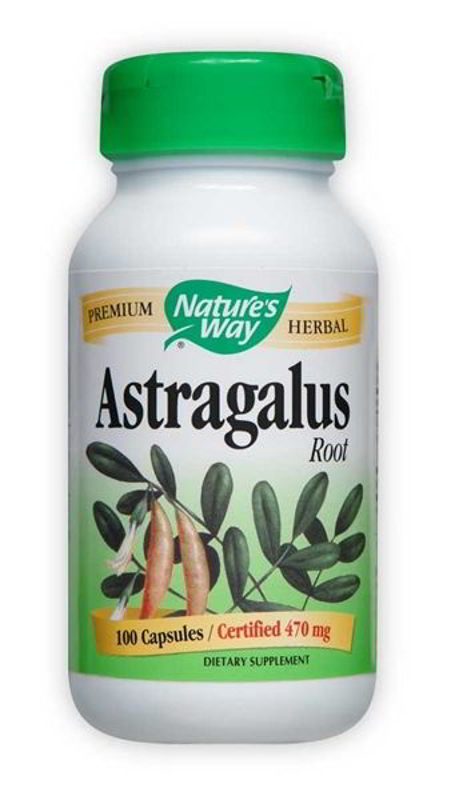 Astragalus Root 470mg, 100 Caps